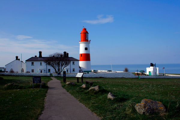 Souter Lighthouse Picnic