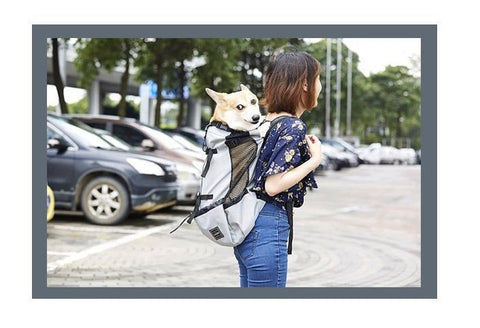woman using dog hiking backpack carrier