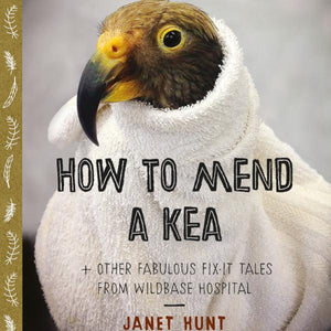 How to Mend a Kea?