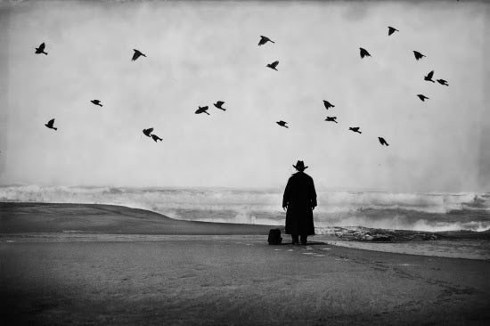 Man In Black With Birds