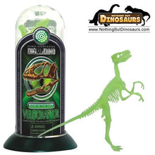Dino Horizons Realistic 3D Glow-In-The-Dark Dinosaur Skeleton Toy Puzzle Test Tubes – Complete Set Of 6