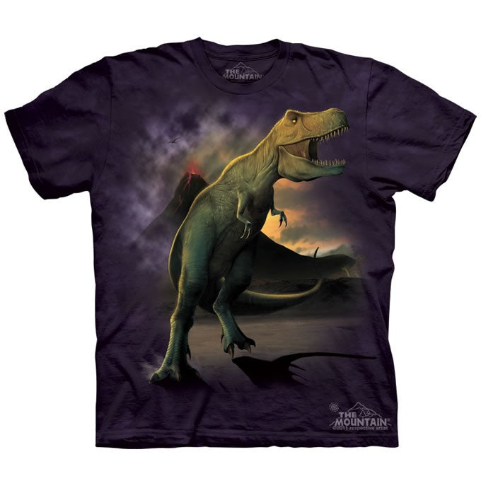 The Mountain T Dinosaur Shirt For Kids, Boys, Girls