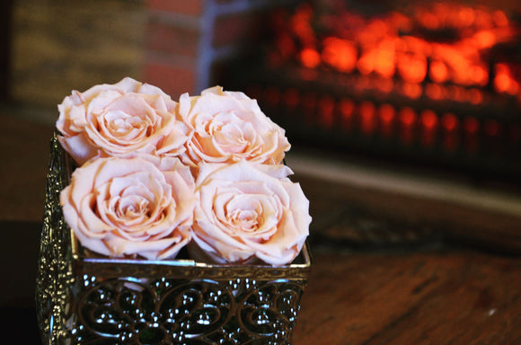 Benefits Of Preserved Flowers And Roses