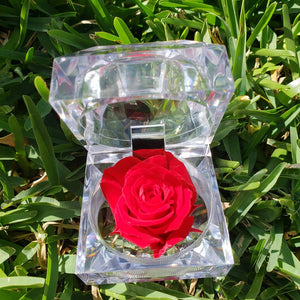 Natural Preserved Rose Crystal Acrylic Ring Box