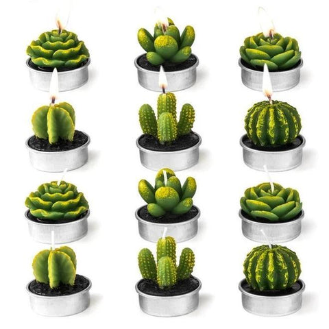 Candles Wax Succulent Candles - Set Of 12