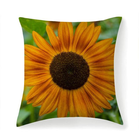 Printy6 Pillow 14''x14'' / Only Pillow Case Overall Print Pillow - Sunflower