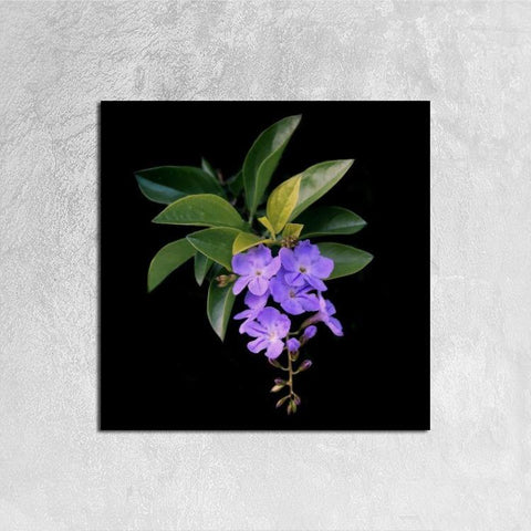 Printy6 Wall art 30cm×30cm Single Panel Canvas Print Wall Art - Violet