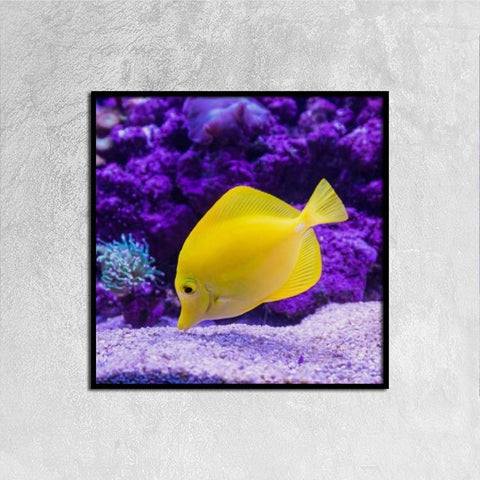 Single Panel Canvas Print Wall Art - Yellow Fish - Wall art - Maletropolis