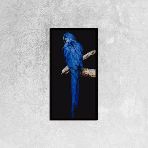 Printy6 Wall art 30cm×60cm Single Panel Canvas Print Wall Art - Blue Parrot