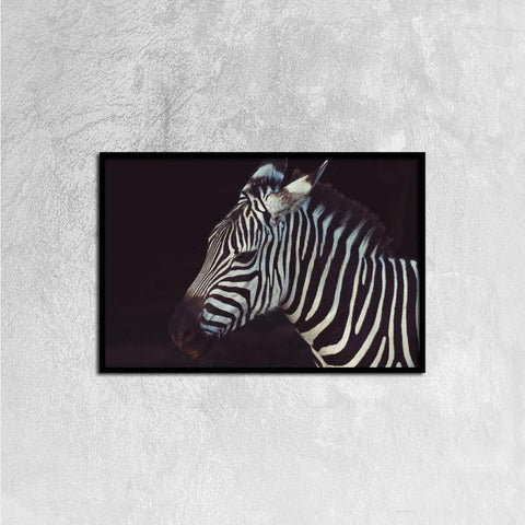 Printy6 Wall art 60cm×40cm Single Panel Canvas Print Wall Art - Zebra