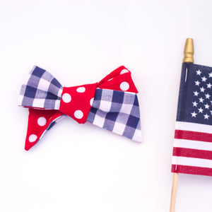 Red dots, and blue gingham River bow