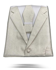 Men's fashion vest set with bowtie in silver color