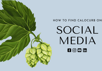 Get Social: How to Find Calocurb on All Your Social Media Platforms