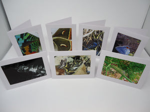 Picture Note Cards