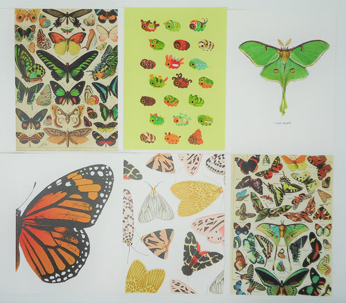 Art Note Cards