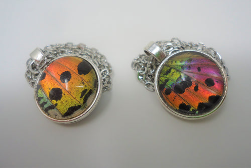 Sunset Moth Double Sided Pendant Necklace