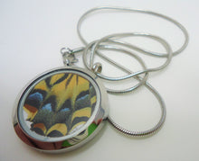 Cremation Ashes Butterfly Locket