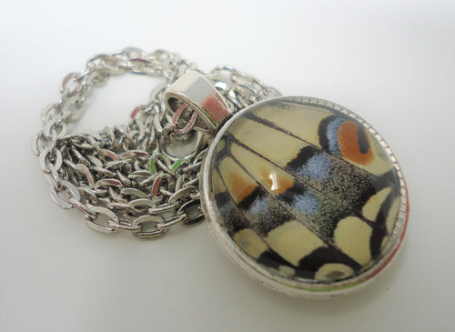 Oregon Swallowtail Double Sided Pendant Necklace