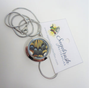 Two Tailed Swallowtail Locket