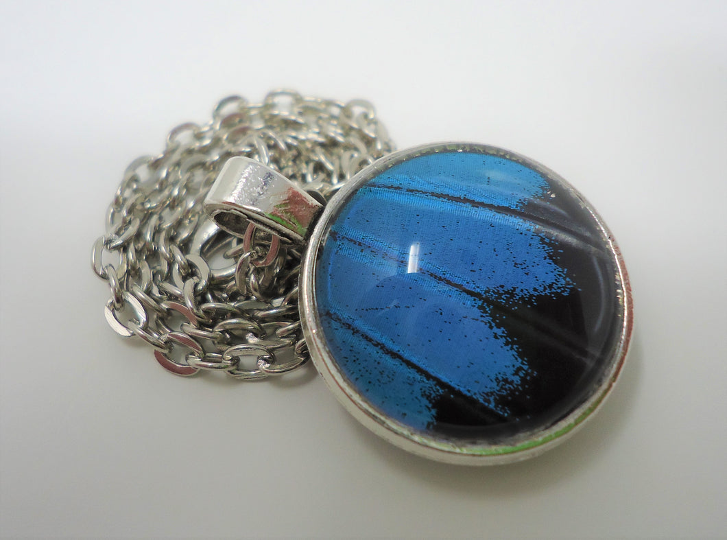 Blue Mountain Swallowtail Double Sided Pendant Necklace