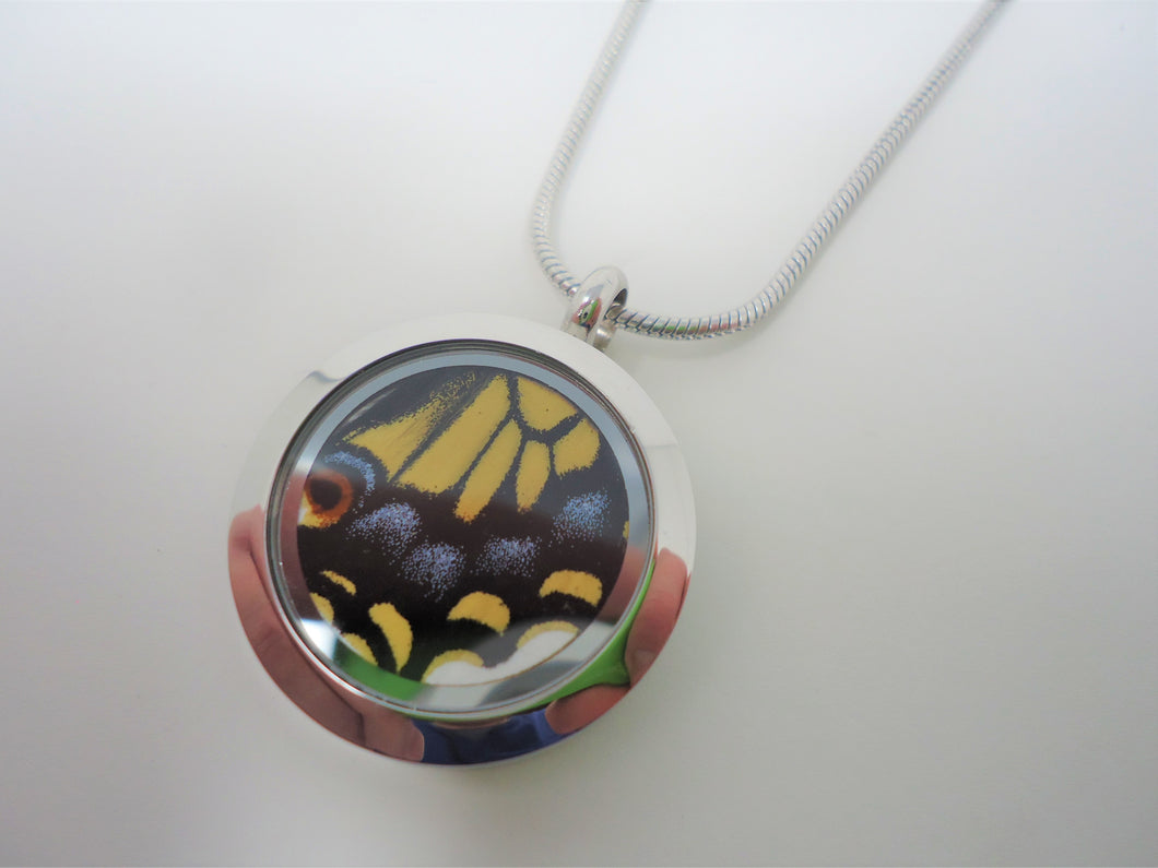 Anise Swallowtail Locket