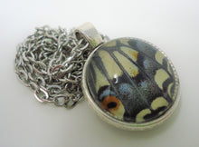 Anise Swallowtail Double Sided Pendant Necklace