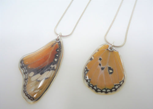 African Queen Butterfly Resin Wing Necklace