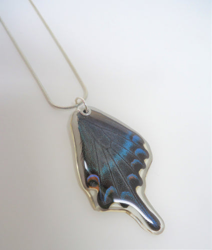 Alpine Black Swallowtail Butterfly Resin Wing Necklace