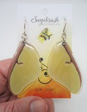 American Moon Moth Resin Earrings