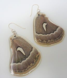 Ceanothus Silkmoth Resin Earrings