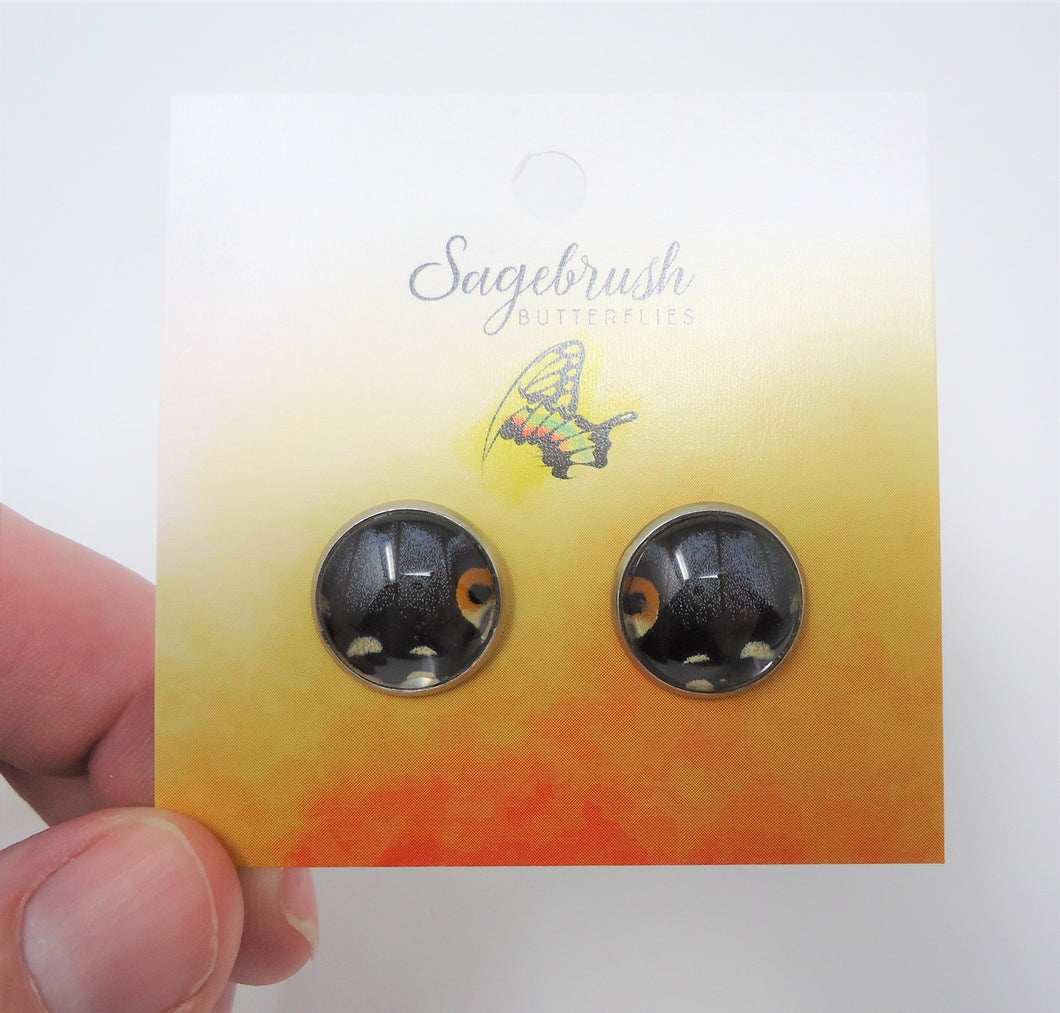 Black Swallowtail Post Earrings