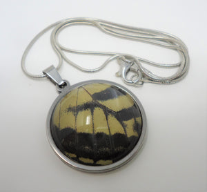 Eastern Tiger Swallowtail Pendant Necklace