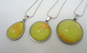 Orange Barred Sulphur Butterfly Pendant Necklace