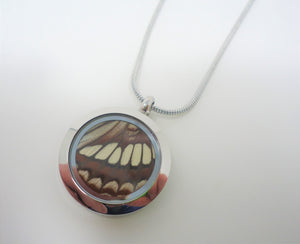 Lorquin's Admiral Butterfly Locket