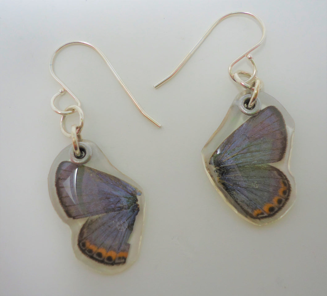 Lupine Blue Butterfly Resin Earrings