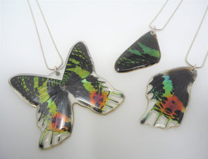 Madagascan Sunset Moth Resin Necklace