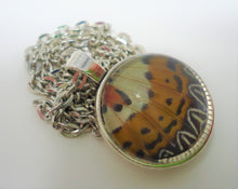 Malay Lacewing Butterfly Double Sided Pendant Necklace