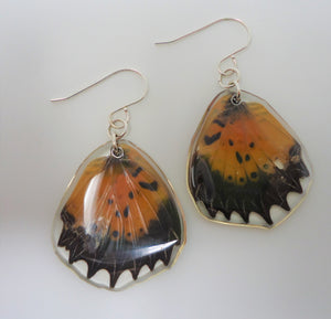 Malay Lacewing Butterfly Resin Earrings