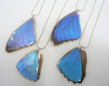 Blue Morpho Butterfly Resin Wing Necklace