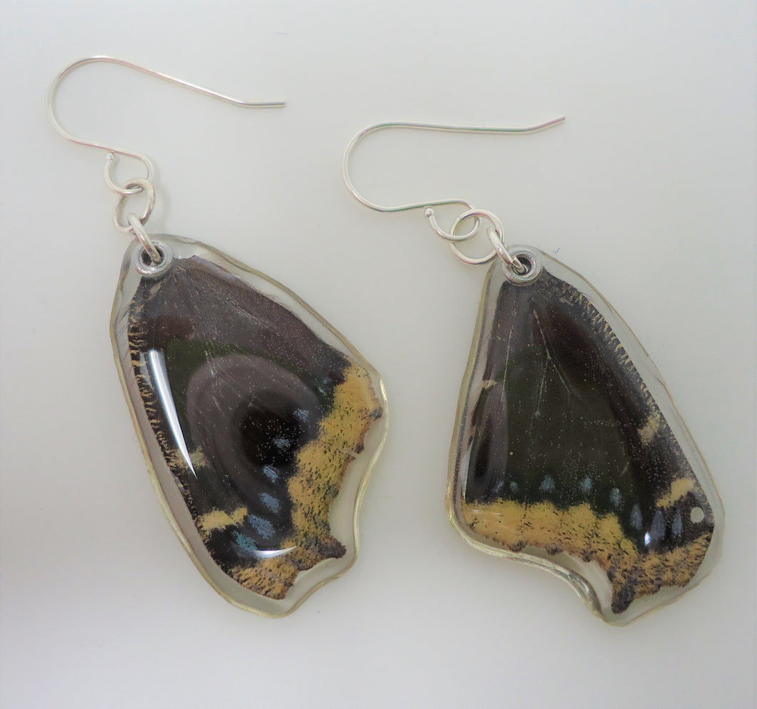 Mourning Cloak Butterfly Resin Earrings
