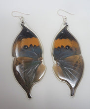 Orange Oak Leaf Butterfly Resin Earrings