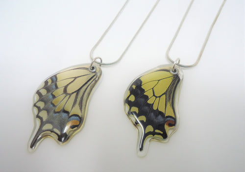 Oregon Swallowtail Butterfly Resin Necklace