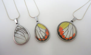Painted Jezebel Butterfly Pendant Necklace - Hyparete