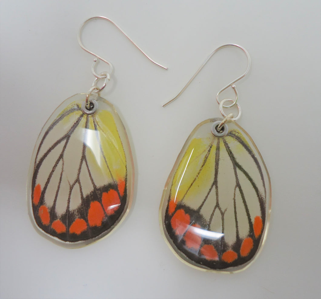 Painted Jezebel Butterfly Resin Earrings