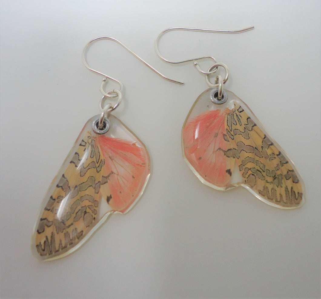 Painted Tiger Moth Resin Earrings
