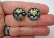 Two-tailed Swallowtail Post Earrings