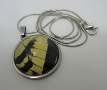 Two Tailed Swallowtail Pendant Necklace