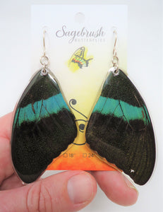 Peacock Swallowtail Resin Earrings