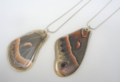 Robin Moth Resin Wing Necklace
