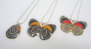 Callicore Butterfly Resin Necklace